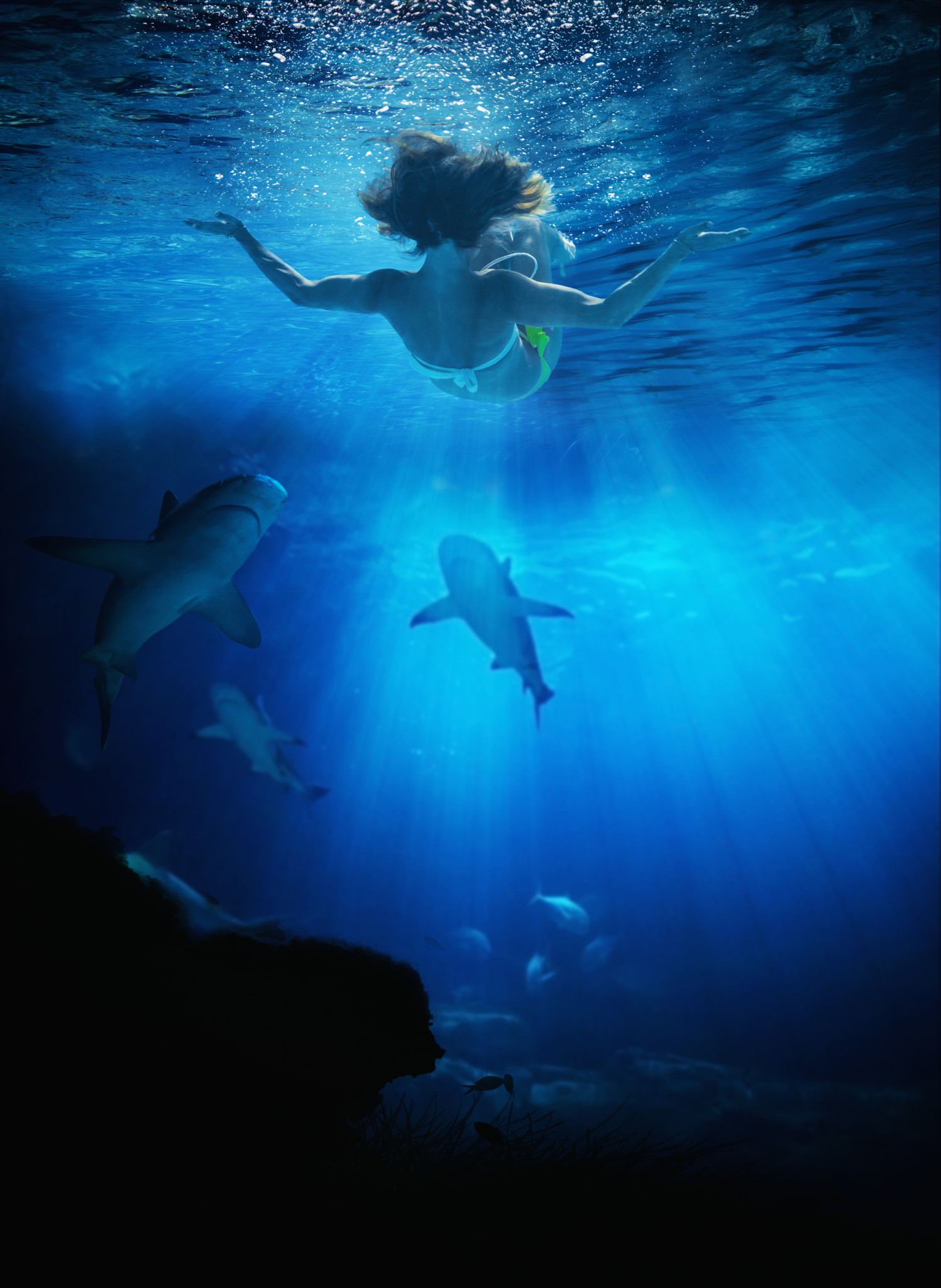 Young Woman Swimming With Skarks In The Ocean